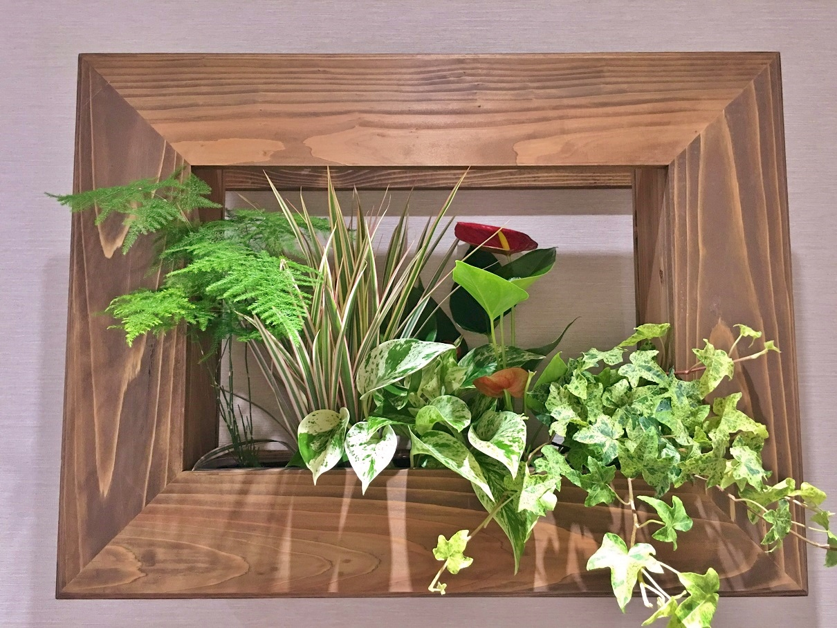 Plant Frame G‐010